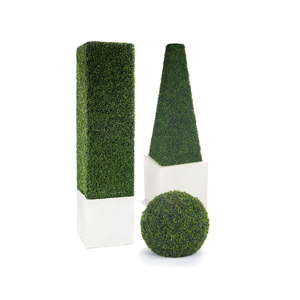 Boxwood & Topiary
